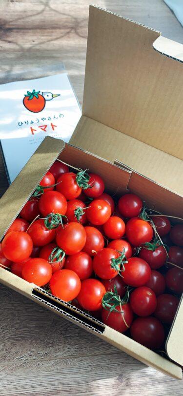 ガチリピ決定!美味しすぎるトマト、見ーつけた♪